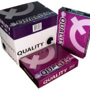 giay-quality-40751